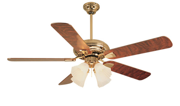 Gazzaoui smc osciliating fan mozeypictures Image collections